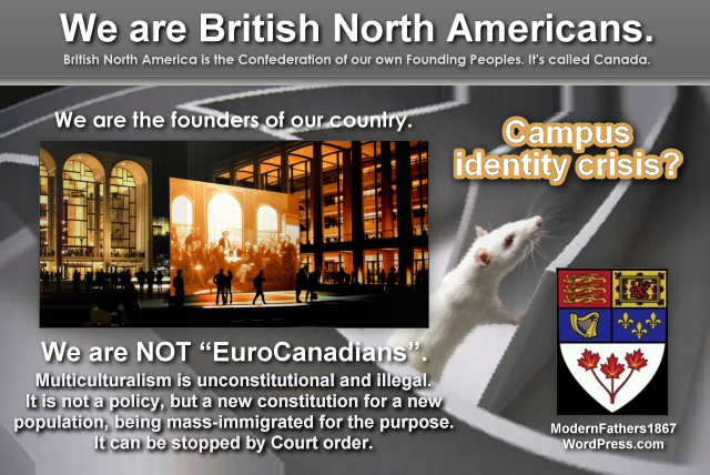 We are British North Americans. Mass immigration and multiculturalism are illegal. They can be stopped by Court order.